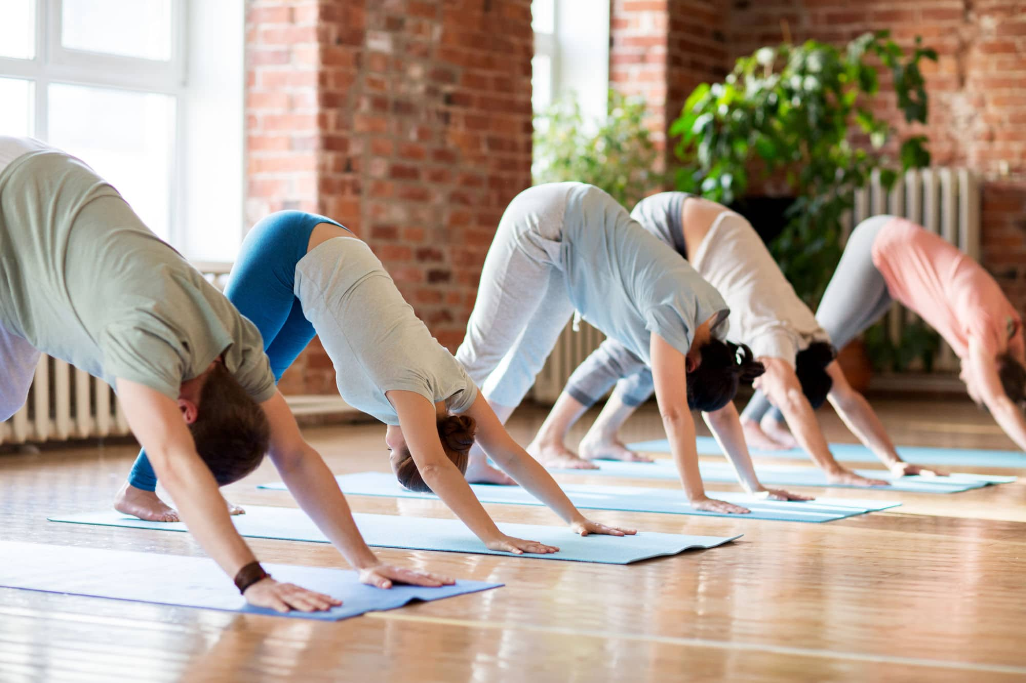 Fitness Sport And Healthy Lifestyle Concept Group Of People Doing Yoga Downward Facing Dog Pose On Mats At Studio Group Of People Doing Yoga Dog P